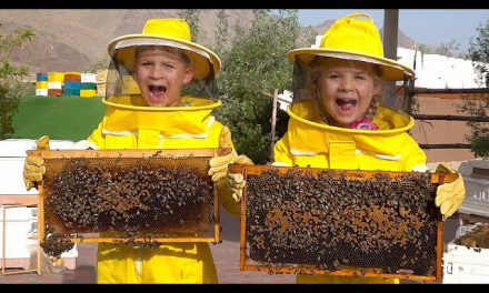 Diana and Roma Learn about Bees, HATTA Honey Bee Garden Tour — Fun family trip